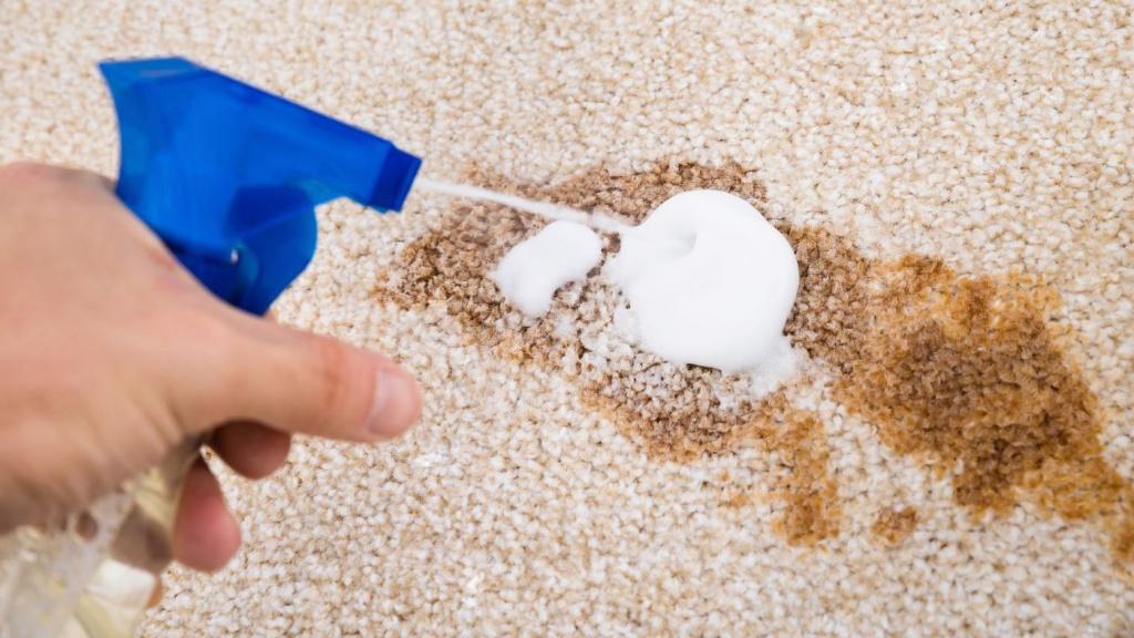 Pour un tapis bien propre comment nettoyer les taches - Comment nettoyer un tapis en coco ...